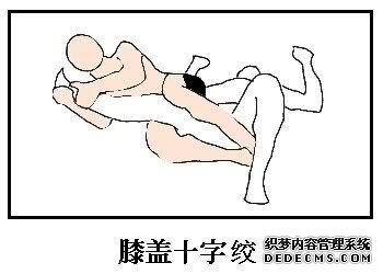 综合格斗技基本技术3